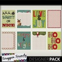 Naughtynice_journal_cards_-1_small