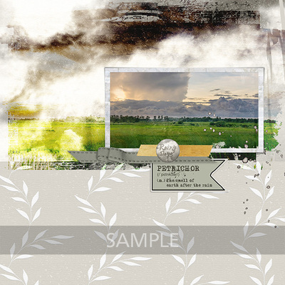 Si_bees_butterflies_layout_2web
