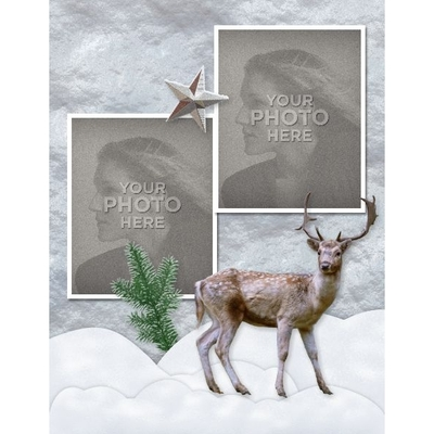 Rustic_winter_8x11_photobook-003