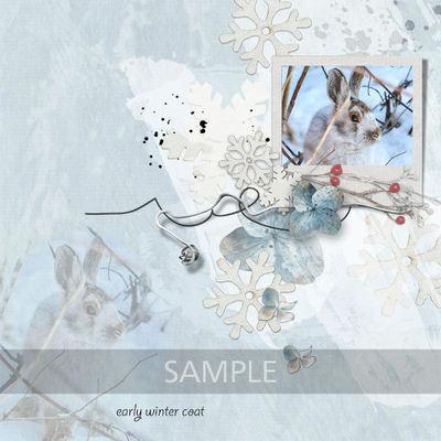 Sample__3_