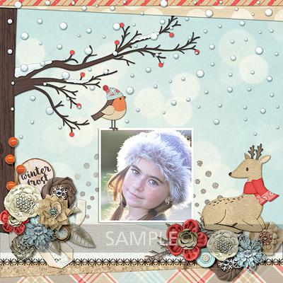Winter-frost-9