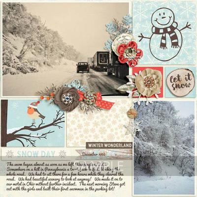 Winter-frost-12