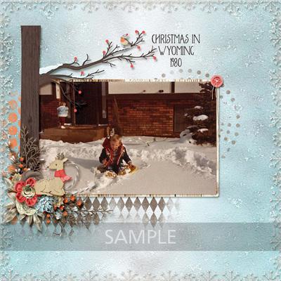 Winter-frost-16