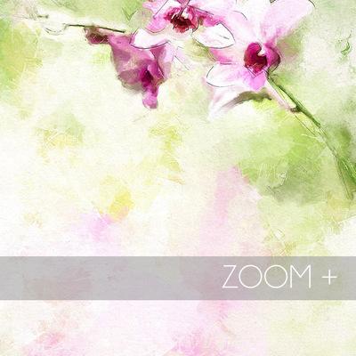 Sample_zoom_copy1