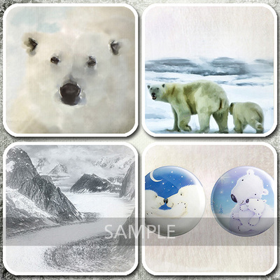 Details_polarbears