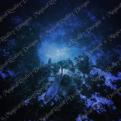 Magicalreality_underwater_bgs2