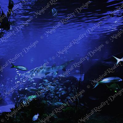 Magicalreality_underwater_bgs6