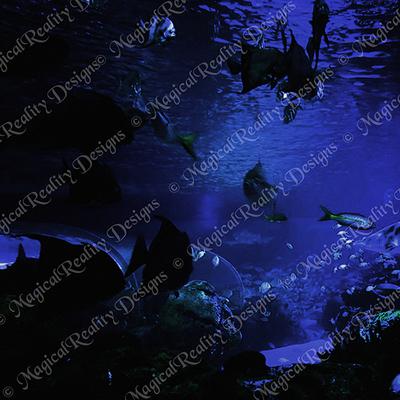 Magicalreality_underwater_bgs9