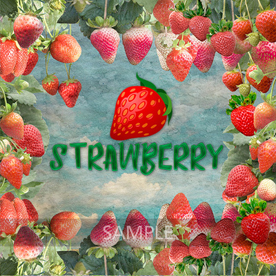 Strawberry_world8