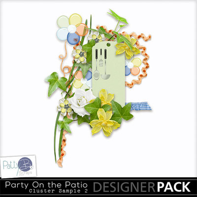 Pbs_party_on_the_patio_sample_cluster2