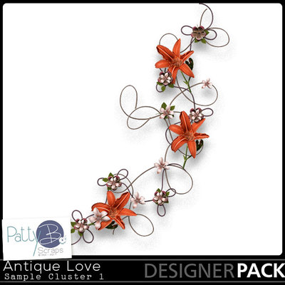 Pbs-antique-love-sample-cluster1