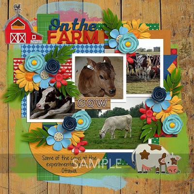 Clevermonkeygraphics-on-the-farm-09