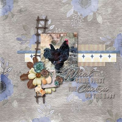 Scrapbookcrazy-creations-by-robyn-what-came-first-rochelle-01