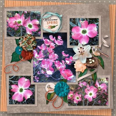 Scrapbookcrazy-creations-by-robyn-welcome-spring-carol-01