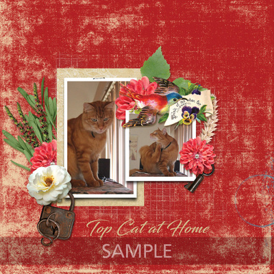 Scrapbookcrazy-creations-by-robyn-home-beautiful-robyn-02