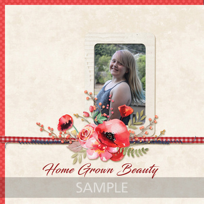 Scrapbookcrazy-creations-by-robyn-home-beautiful-robyn-01