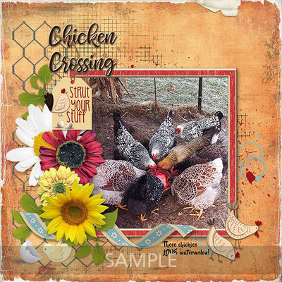 Chicken_scratch_shabby_papers_2
