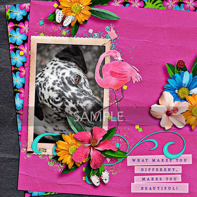 Fabflamingos_sample3