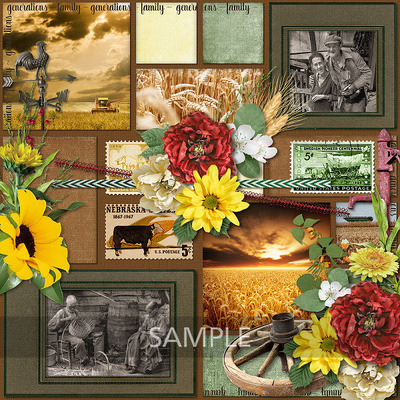 600-adbdesigns-prairie-home-lana-01