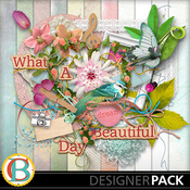 What_a_beautiful_day-001_medium