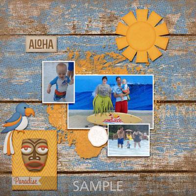 Aloha_amy