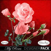 My_roses_mm_medium