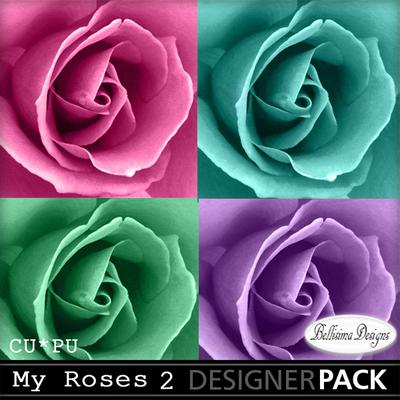 My_roses_2_mm