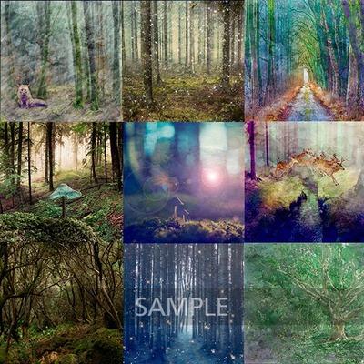 Stunning_forest3
