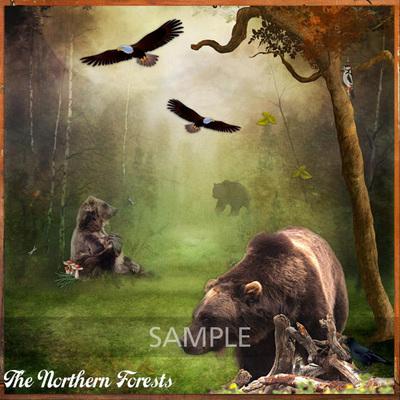 Aotnforests_sample1