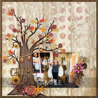 Woodland-fall-14