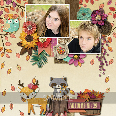 Woodland-fall-9