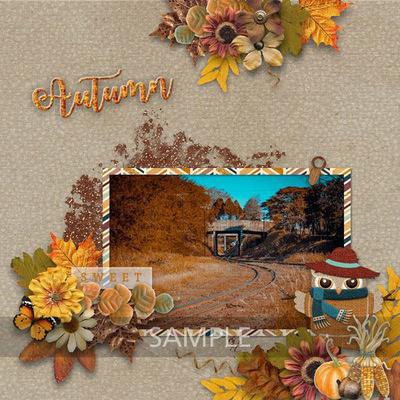 November_sample2