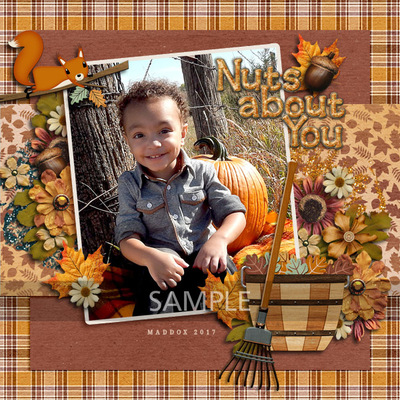 November_sample4