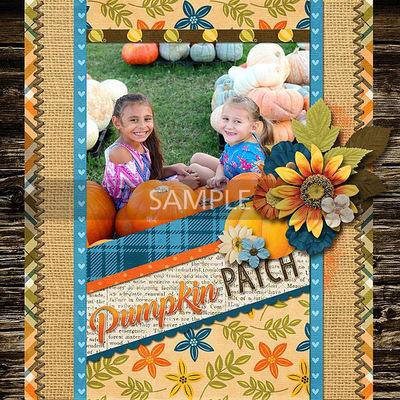 Ls_pumpkinpatch_robin