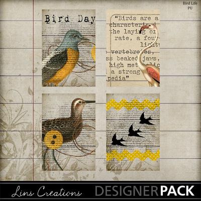 Birdlife-002