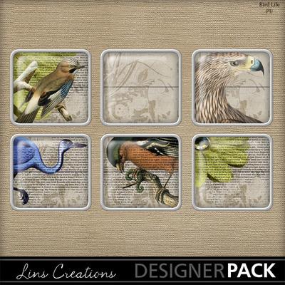 Birdlife-006