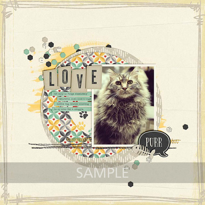 Pretty-paws-cats-12
