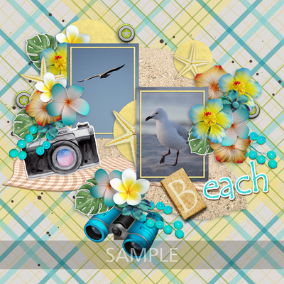 Scrapbookcrazy-creations-by-robyn-summer-beach-fun-robyn-03