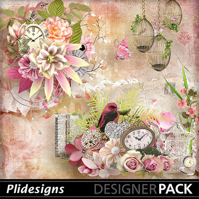 Plidesigns_the_rosetimeofthe_day_pv
