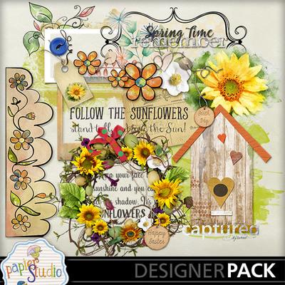 Follow_the_sunflowers-004
