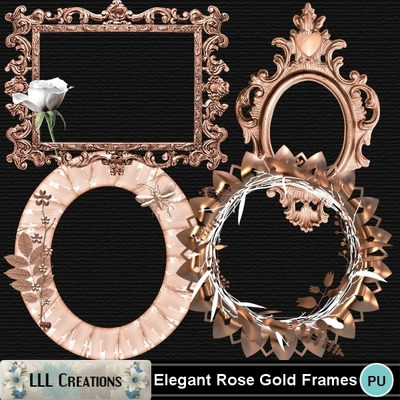 Elegant_rose_gold_frames-01