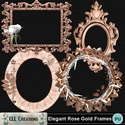 Elegant_rose_gold_frames-01_small