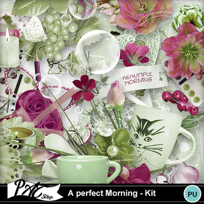 Patsscrap_a_perfect_morning_pv_kit