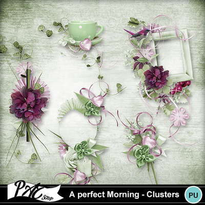 Patsscrap_a_perfect_morning_pv_clusters