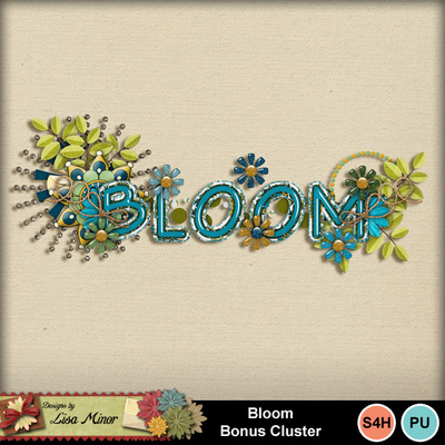 Bloombonuscluster