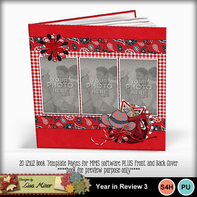 Yearinreview3book