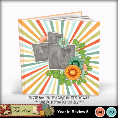 Yearinreview6book