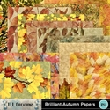 Brilliant_autumn_papers-01_small