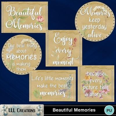Beautiful_memories-04