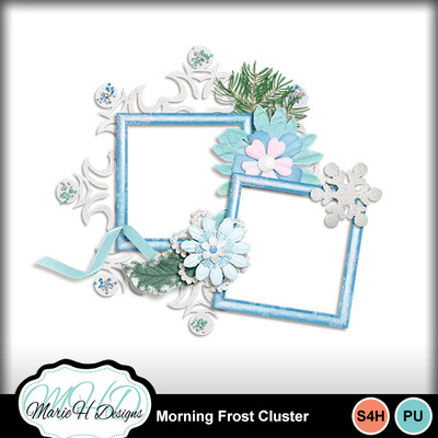 Morning_frost_cluster